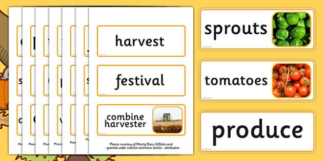 Harvest Topic Word Cards - Word card, flashcard, flashcards, harvest, harvest festival, fruit, apple, pear, orange, wheat, bread, grain, leaves, conker