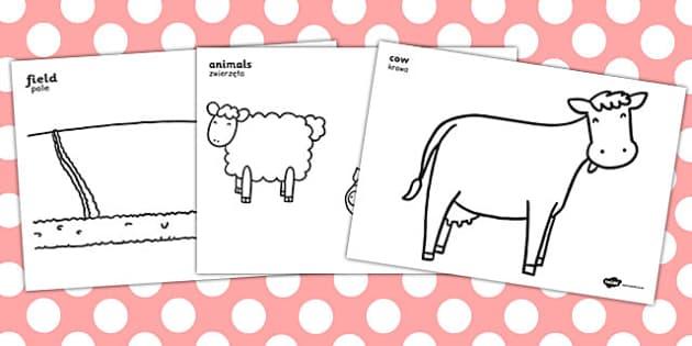 Farm Colouring Posters Polish Translation - polish, farm, colouring