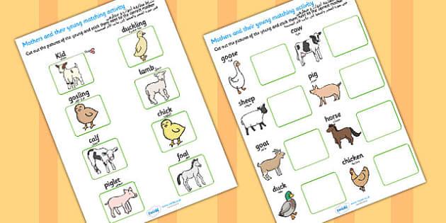 نشاط لمطابقة حيوانات المزرعة وصغارها إنجليزي عربي