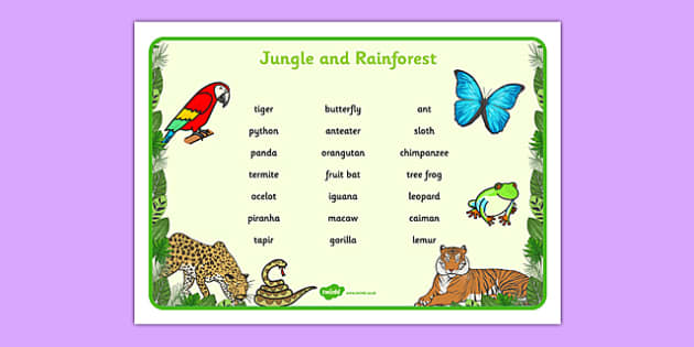 Jungle & Rainforest Word Mat (Text Version) -  Jungle, Rainforest, word mat, writing aid, vines, A4, display, snake, forest, ecosystem, rain, humid, parrot, monkey, gorilla