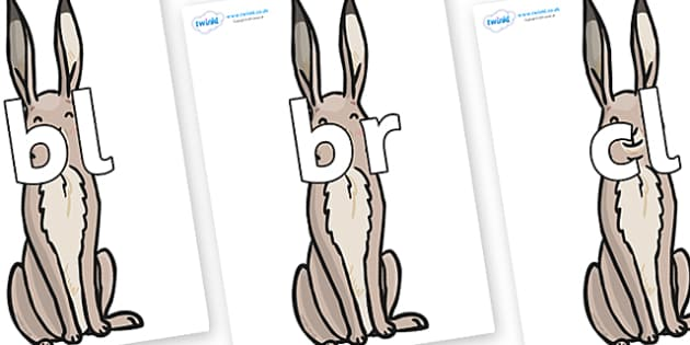 Initial Letter Blends on Hare - Initial Letters, initial letter, letter blend, letter blends, consonant, consonants, digraph, trigraph, literacy, alphabet, letters, foundation stage literacy