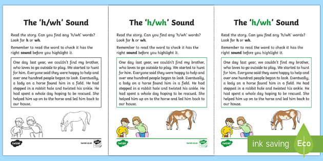 NI Linguistic Phonics Stage 5 and 6 Phase 3a, 'h, wh' Sound Activity Sheet - Linguistic Phonics, Phase 3a, Northern Ireland, 'h', 'wh', sound, sound search, text, Workshee
