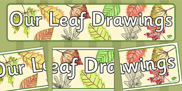 Our Leaf Drawings Display Banner - Banners, displays, Leaves
