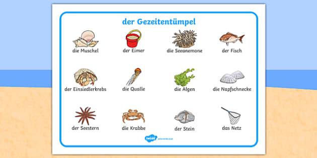 der Gezeitentümpel Seaside Rock Pool Word Mat German - german, seaside, beach, seaside word mat, rockpool word mat, rock pool word mat, seaside key words, seaside words, beach words