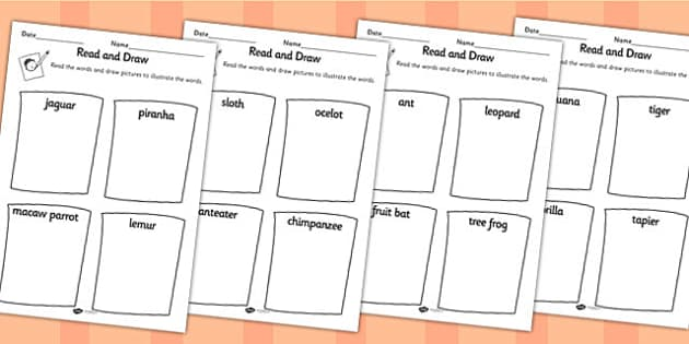 Jungle Themed Read And Draw Worksheet - jungle, reading, drawing