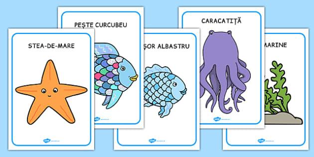 Peștele curcubeu, Cartonașe