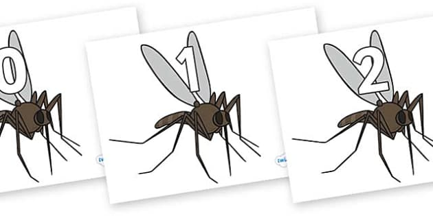 Numbers 0-50 on Mosquitos - 0-50, foundation stage numeracy, Number recognition, Number flashcards, counting, number frieze, Display numbers, number posters