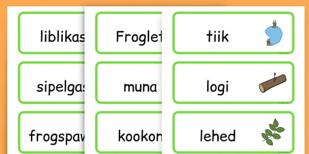 Life Cycle Word Cards - life cycles, lifecycle, visual aid, words - Estonian