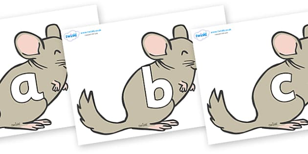 Phoneme Set on Chinchillas - Phoneme set, phonemes, phoneme, Letters and Sounds, DfES, display, Phase 1, Phase 2, Phase 3, Phase 5, Foundation, Literacy