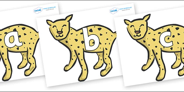 Phoneme Set on Cheetahs - Phoneme set, phonemes, phoneme, Letters and Sounds, DfES, display, Phase 1, Phase 2, Phase 3, Phase 5, Foundation, Literacy