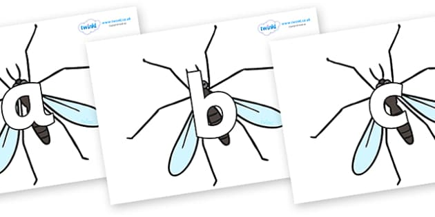 Phoneme Set on Crane Flies - Phoneme set, phonemes, phoneme, Letters and Sounds, DfES, display, Phase 1, Phase 2, Phase 3, Phase 5, Foundation, Literacy