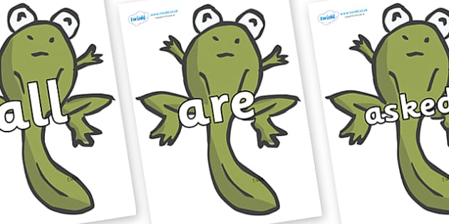 Tricky Words on Froglets - Tricky words, DfES Letters and Sounds, Letters and sounds, display, words