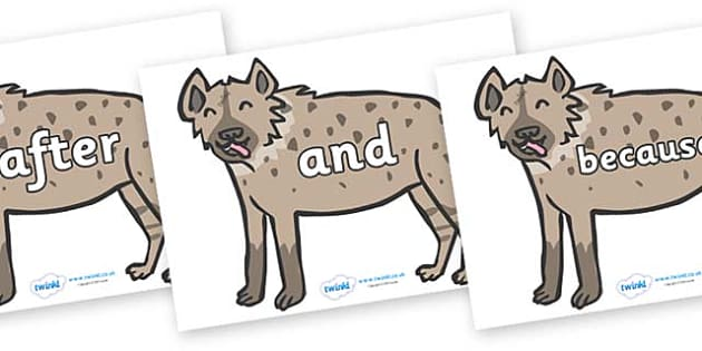 Connectives on Hyenas - Connectives, VCOP, connective resources, connectives display words, connective displays