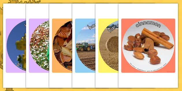 Autumn Display Photo Cut Outs - cutouts, seasons, weather, photos