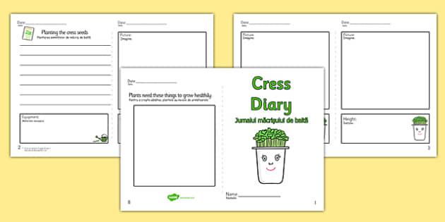 Growing Cress Diary Writing Frame Romanian Translation - romanian, growing cress, diary, writing