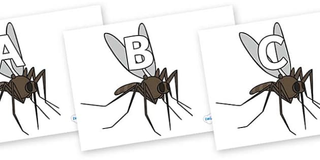 A-Z Alphabet on Mosquitos - A-Z, A4, display, Alphabet frieze, Display letters, Letter posters, A-Z letters, Alphabet flashcards