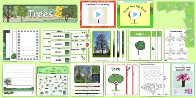 Trees Resource Pack - Trees, nature, wildlife, deciduous, evergreen, evergreen trees,