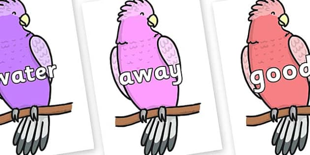 Next 200 Common Words on Galah - Next 200 Common Words on  - DfES Letters and Sounds, Letters and Sounds, Letters and sounds words, Common words, 200 common words