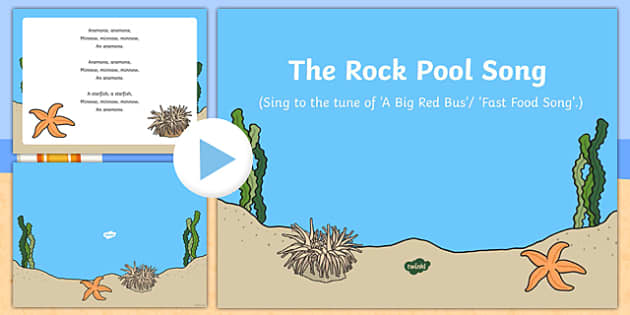 The Rock Pool Song PowerPoint