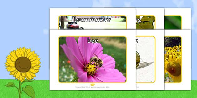 Summer Display Photos - Summer, seasons, photo, display photo, beach, sun, flowers, ice cream, sea, seaside
