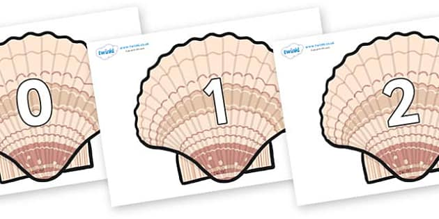 Numbers 0-31 on Seashells - 0-31, foundation stage numeracy, Number recognition, Number flashcards, counting, number frieze, Display numbers, number posters