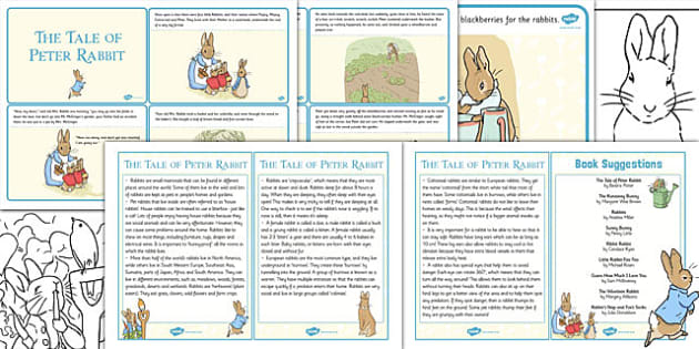 The Tale of Peter Rabbit Discovery Sack - discovery sack, peter rabbit