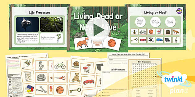 PlanIt - Science Year 2 - Living Things and Their Habitats Lesson 1: Living Dead or Never Alive - science, ks1, key stage 1, planning, resources, topic, nature, animals, places, homes, display, activities