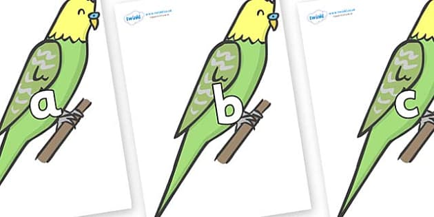 Phase 2 Phonemes on Budgies - Phonemes, phoneme, Phase 2, Phase two, Foundation, Literacy, Letters and Sounds, DfES, display