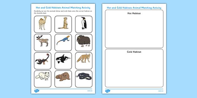Hot and Cold Habitats Animal Sorting Worksheet - hot, cold, habitats, animal, sorting, worksheet