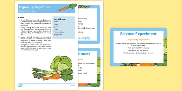 EYFS Regrowing Vegetables Science Experiment and Prompt Card Pack - carrot, celery, spring onion, lettuce, grow