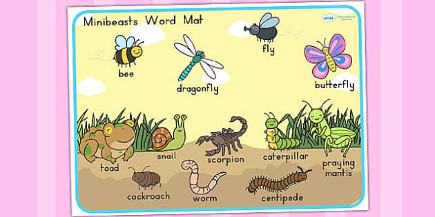 Minibeasts Cute Scene Word Mat - word mats, keywords, keyword mat