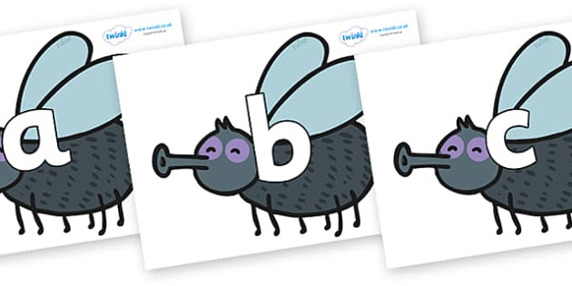 Phoneme Set on Flies - Phoneme set, phonemes, phoneme, Letters and Sounds, DfES, display, Phase 1, Phase 2, Phase 3, Phase 5, Foundation, Literacy