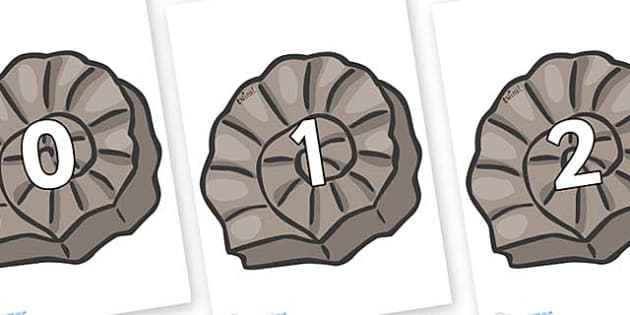 Numbers 0-50 on Fossils - 0-50, foundation stage numeracy, Number recognition, Number flashcards, counting, number frieze, Display numbers, number posters