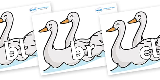Initial Letter Blends on Swans - Initial Letters, initial letter, letter blend, letter blends, consonant, consonants, digraph, trigraph, literacy, alphabet, letters, foundation stage literacy