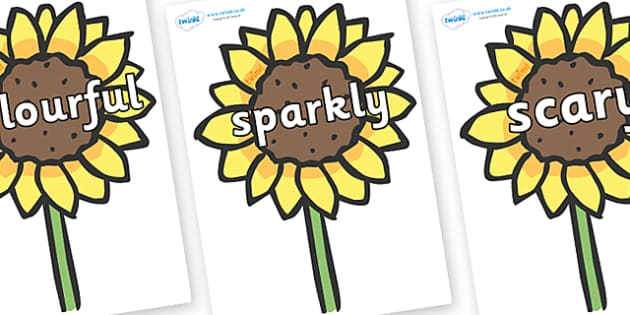 Wow Words on Sunflowers - Wow words, adjectives, VCOP, describing, Wow, display, poster, wow display, tasty, scary, ugly, beautiful, colourful sharp, bouncy