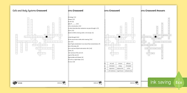 KS3 Cells and Body Systems Crossword