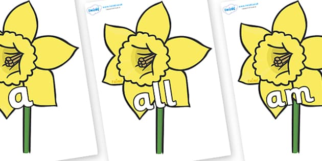 Foundation Stage 2 Keywords on Daffodils - FS2, CLL, keywords, Communication language and literacy,  Display, Key words, high frequency words, foundation stage literacy, DfES Letters and Sounds, Letters and Sounds, spelling