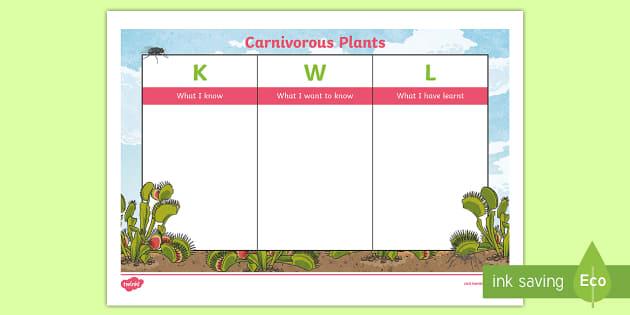 Carnivorous Plants KWL Grid - plants, carnivorous plants, carnivore, meat eaters, meat eating plants, Venus fly trap, Venus flytra
