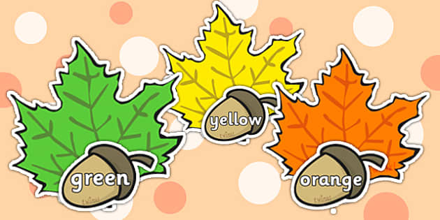 Autumn Acorn and Leaf Matching Activity - autumn, acorn, leaf, seasons, matching activity, matching game, picture matching, matching, themed matching game