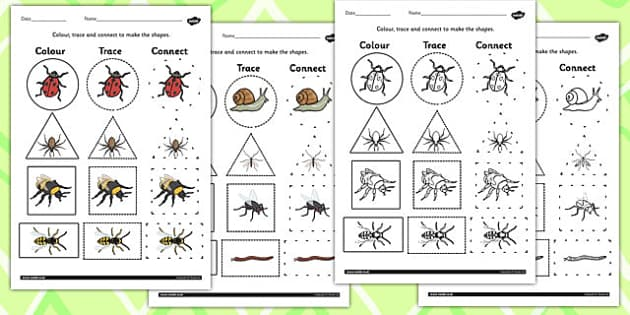 Minibeasts 2D Shape Colour Trace and Join the Dots - colours, dot