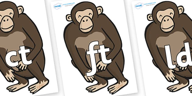 Final Letter Blends on Chimps - Final Letters, final letter, letter blend, letter blends, consonant, consonants, digraph, trigraph, literacy, alphabet, letters, foundation stage literacy