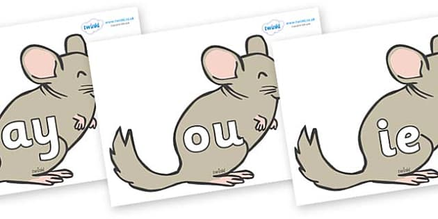 Phase 5 Phonemes on Chinchillas - Phonemes, phoneme, Phase 5, Phase five, Foundation, Literacy, Letters and Sounds, DfES, display