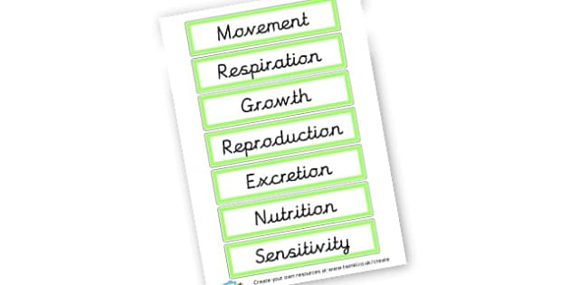 Plants Word Cards - Plants & Growth Classroom Labels Primary Resources, flowers