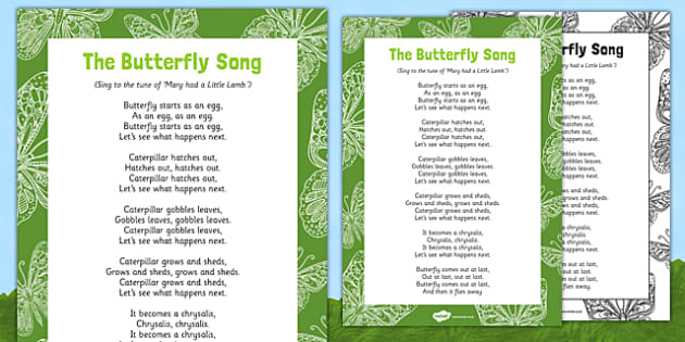 The Butterfly Song - EYFS, butterfly, egg, life cycle, cocoon, caterpillar