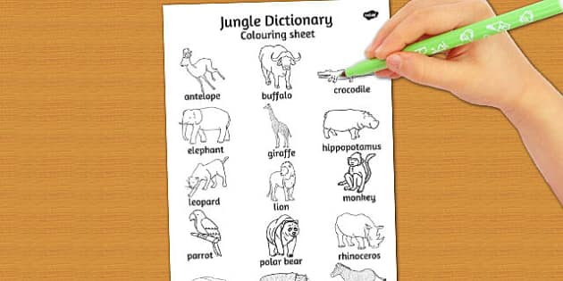 Jungle Dictionary Colouring sheet - colours, jungles, sheets