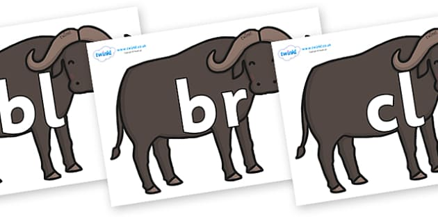 Initial Letter Blends on Buffalos - Initial Letters, initial letter, letter blend, letter blends, consonant, consonants, digraph, trigraph, literacy, alphabet, letters, foundation stage literacy