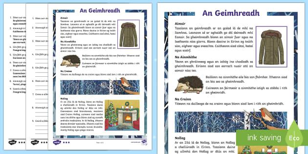 An Geimhreadh 5th/6th Class Differentiated Reading Comprehension Activity - Differentiated Winter in Ireland Comprehensions ROI, ialtóg, gráinneog, duilleoga, nollag, crann,