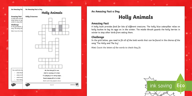 Amazing Fact a Day KS2 Countdown to Christmas Day 14 Holly Criss Cross Activity Sheet - Amazing Fact Of The Day, activity sheets, powerpoint, starter, morning activity, December, Christmas