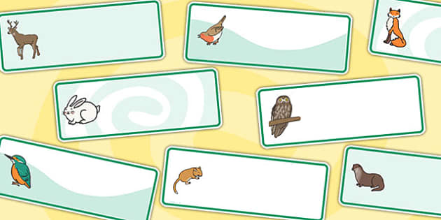 Green Editable Animal Drawer Labels - editable labels, animals, animal labels, drawer peg labels, drawer labels, peg labels, name labels, themed labels