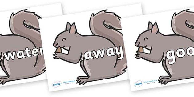 Next 200 Common Words on Grey Squirrels - Next 200 Common Words on  - DfES Letters and Sounds, Letters and Sounds, Letters and sounds words, Common words, 200 common words